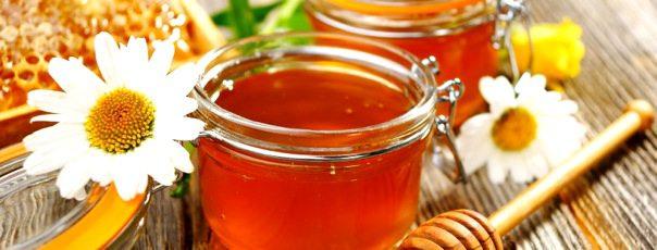 Как использовать мед в кулинарии